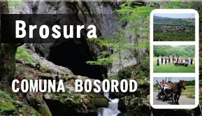 BOSOROD BROSURA
